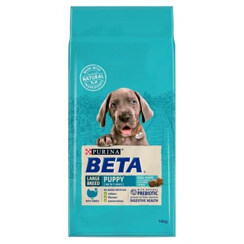 beta large breed puppy