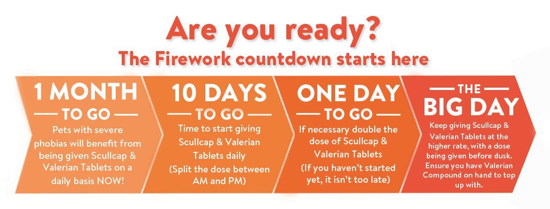 fireworks-countdown.jpg