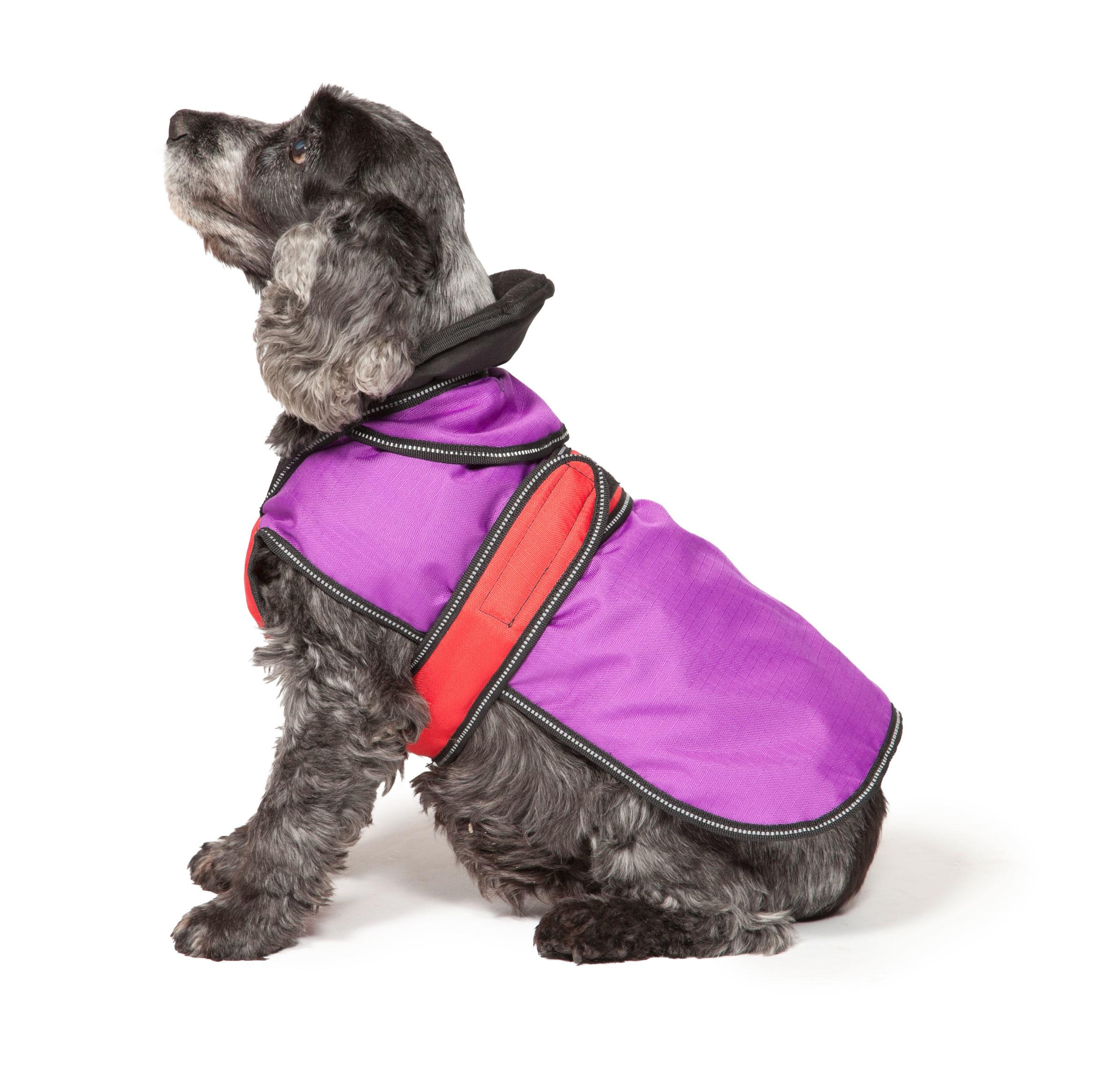 Purple 2 in 1 dog coat