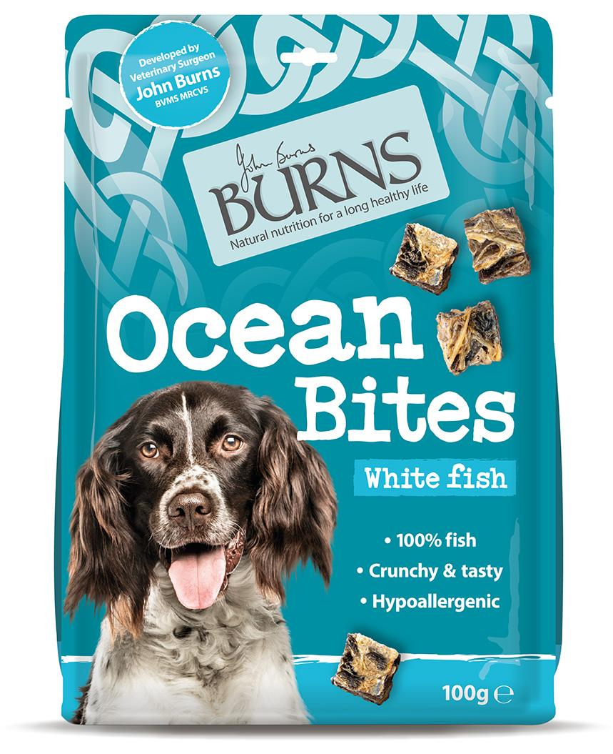 Burns Ocean Bites