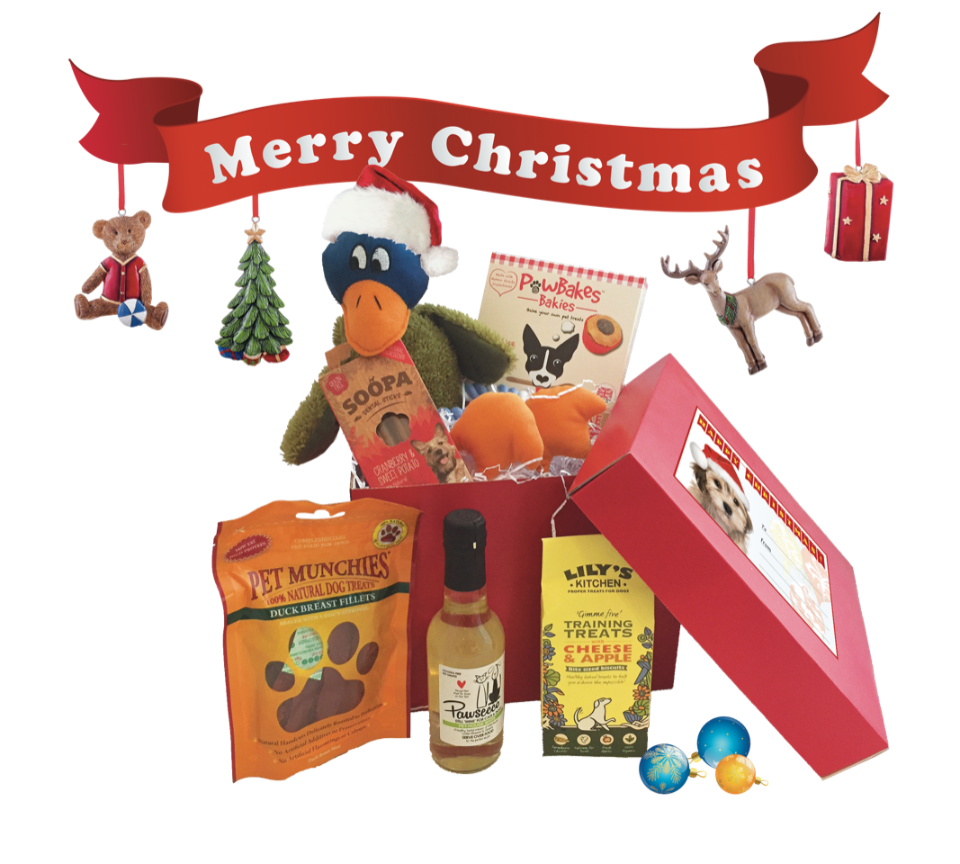 Petshop [postie Christmas Celebration Box for Dogs
