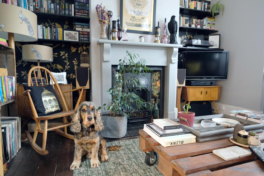 Interior Inspo: A Dark, Vintage, Gothic Living Room