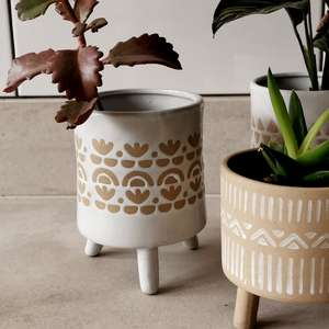 Ibiza Leggy Plant Pot at Albert & Moo