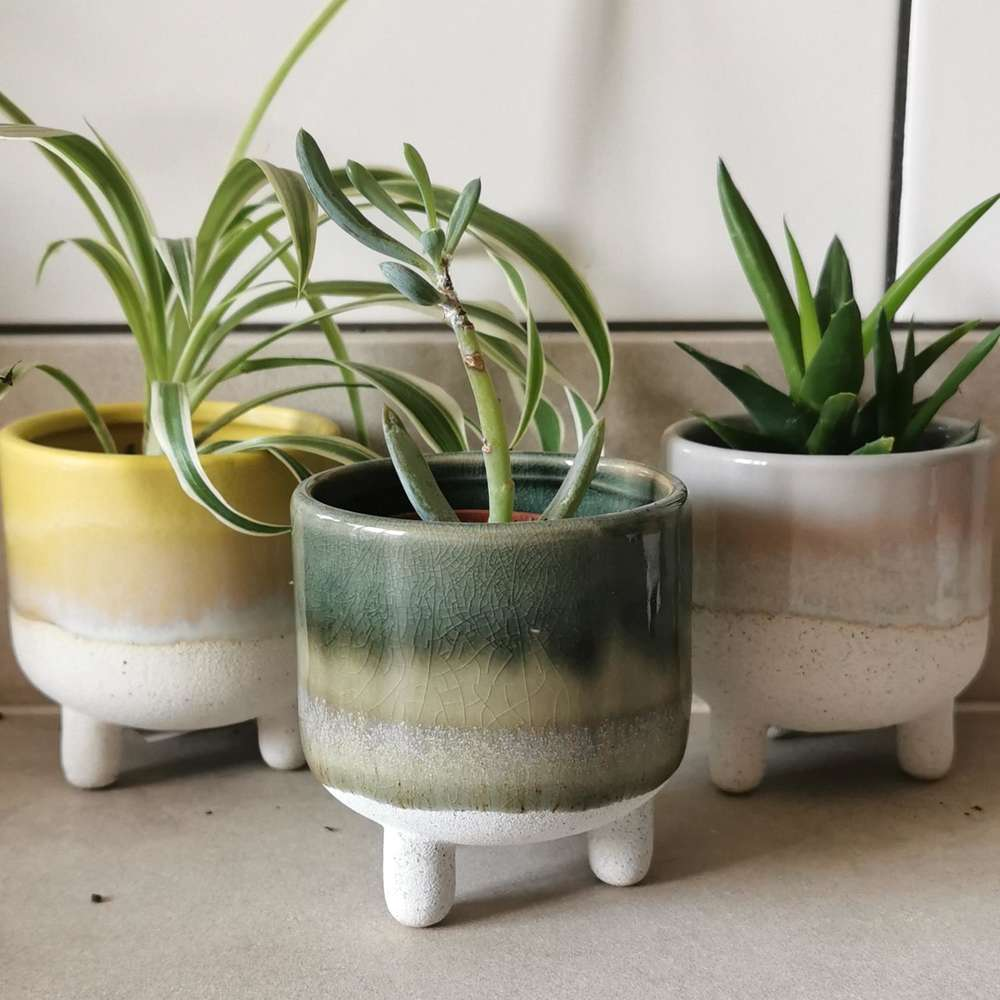 Green Mojave Glaze Plant Pot at Albert & Moo