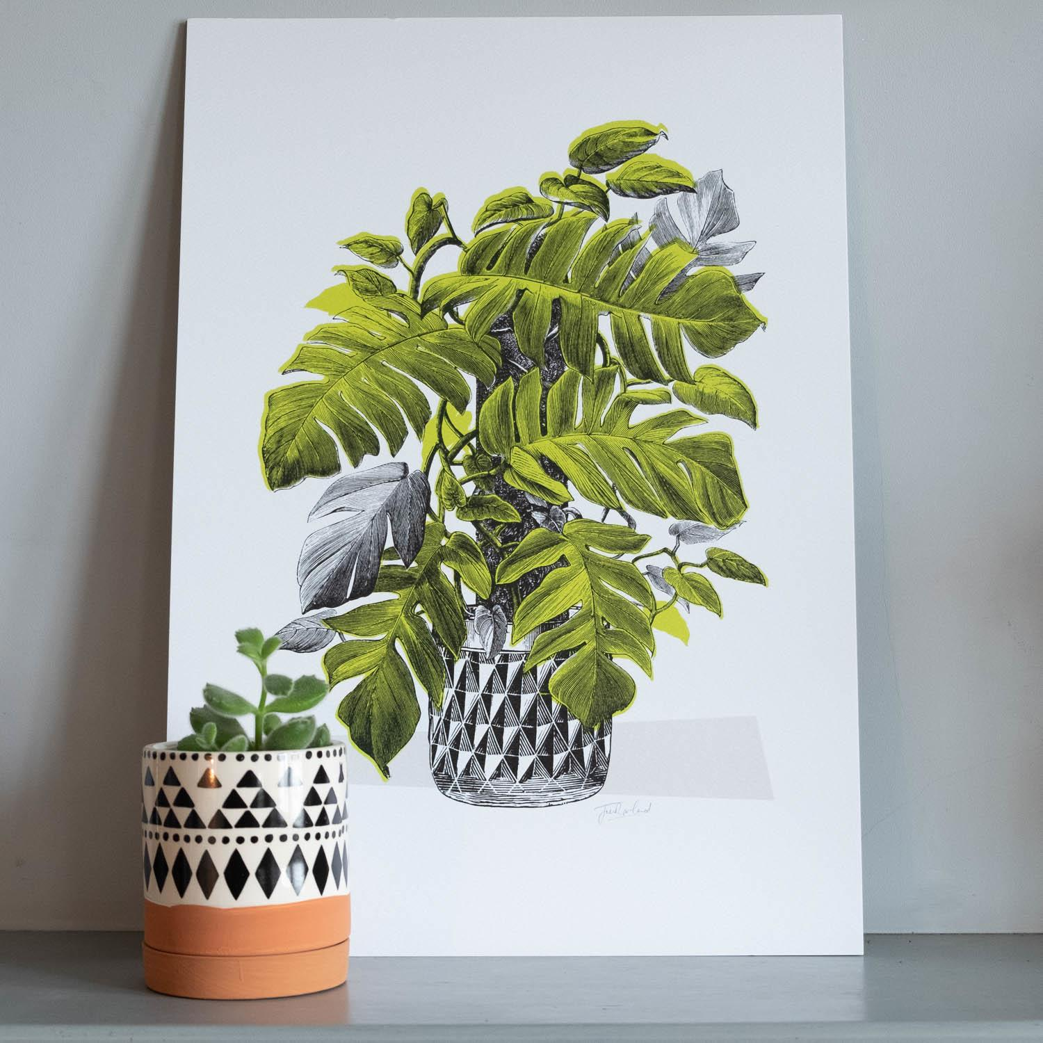 Jen Rowland Green Monstera Cheese Plant A3 Print at Albert & Moo