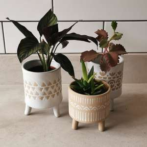 Isabella Leggy Plant Pot at Albert & Moo