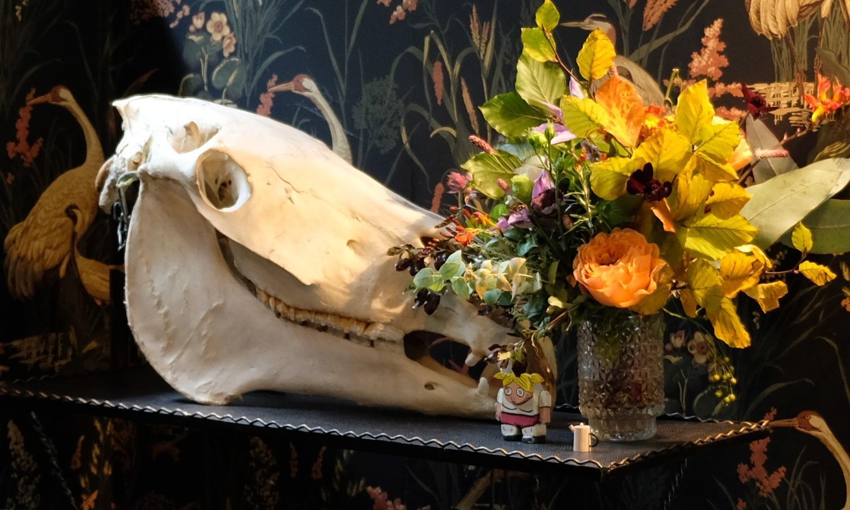 Stunning dark, floral wallpaper and animal skull in De Beauvoir Townhouse for Living Etc.