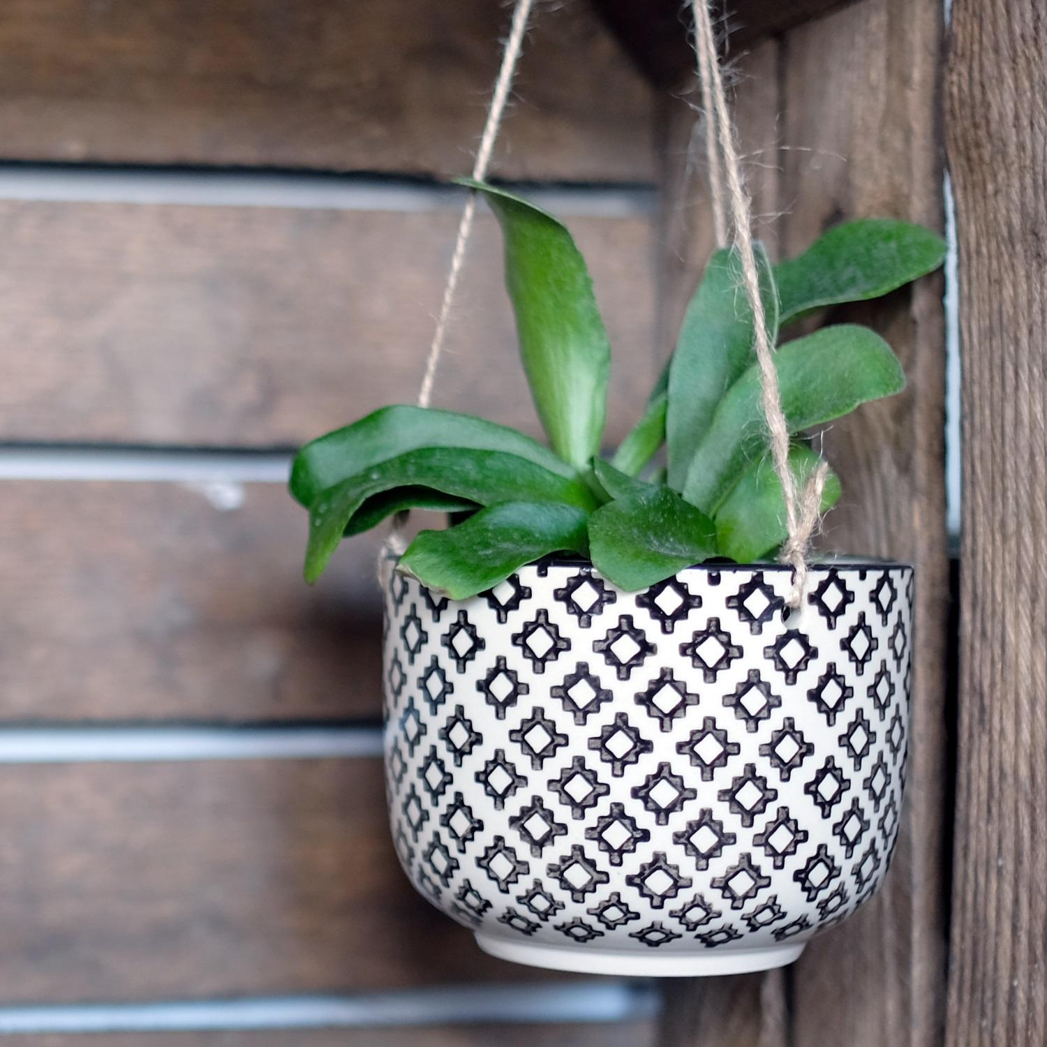Black Geo Tahlia Hanging Plant Pot at Albert & Moo