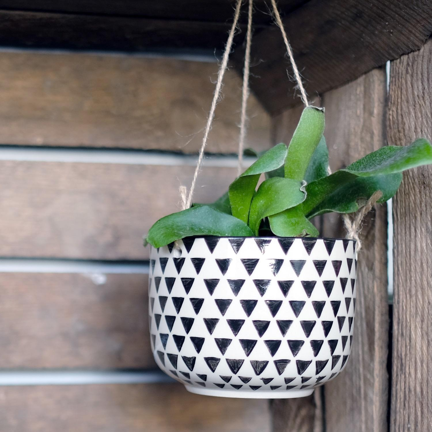 Black Geo Isla Hanging Plant Pot at Albert & Moo