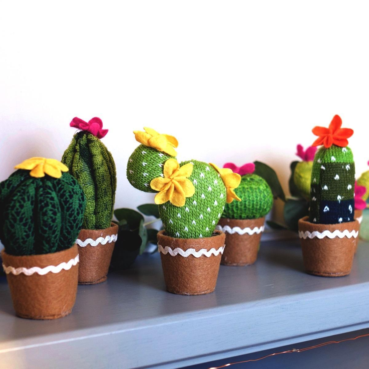 Knitted Cactus at Albert & Moo