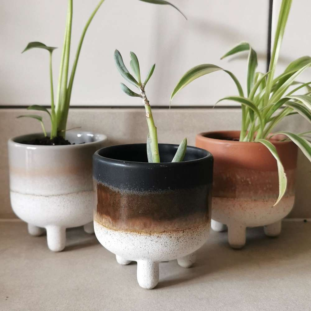 Black Mojave Glaze Plant Pot at Albert & Moo