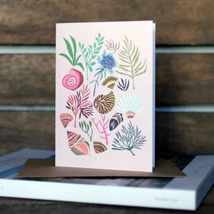 Brie Harrison Botanical Illustration Greetings Cards at Albert & Moo