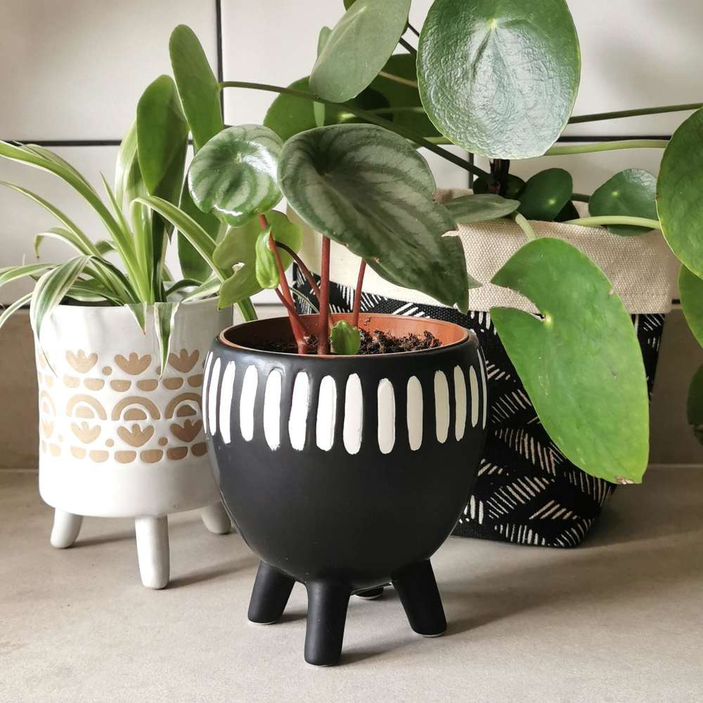 Black Grooved Leggy Plant Pot at Albert & Moo
