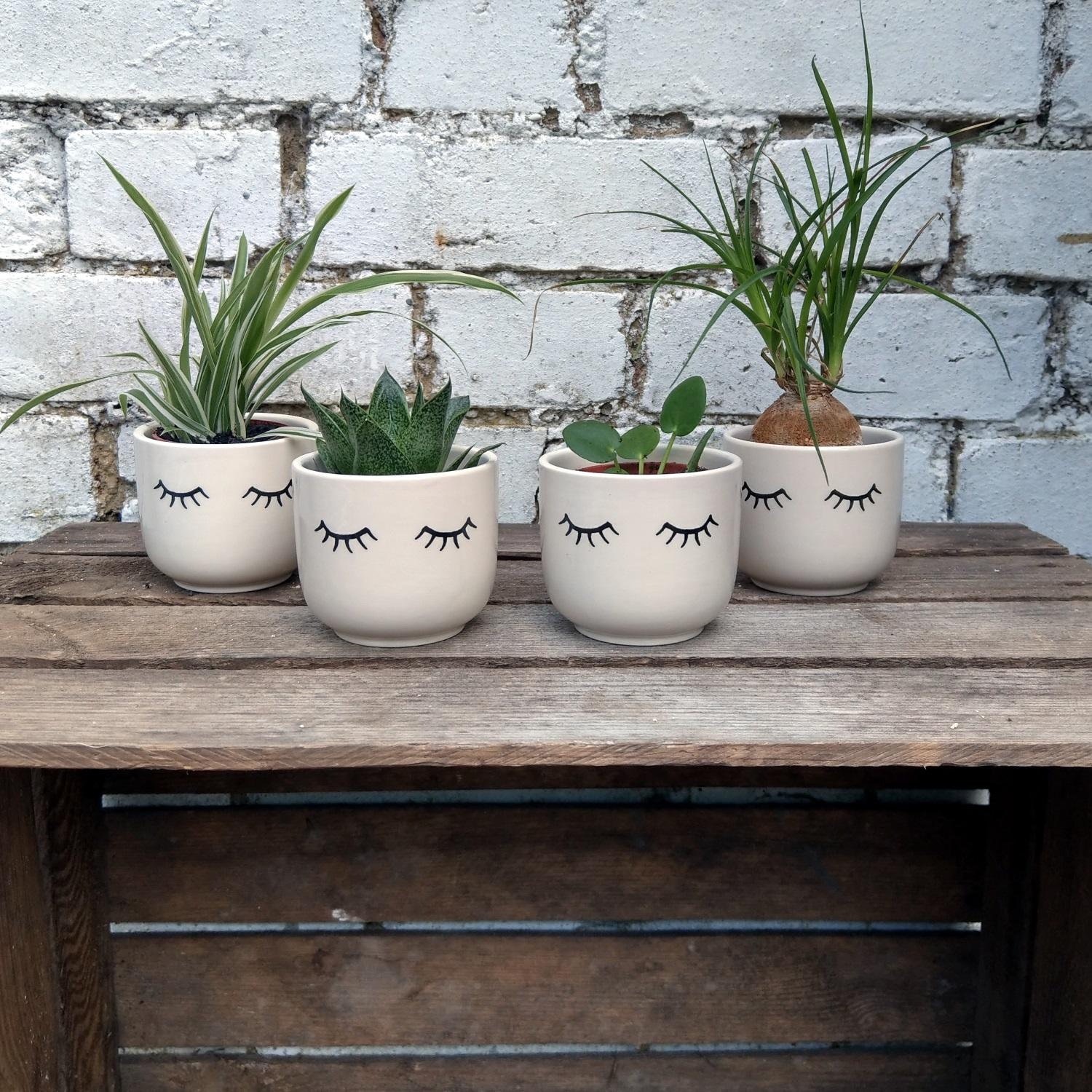 Tired Eyes Mini Plant Pot at Albert & Moo