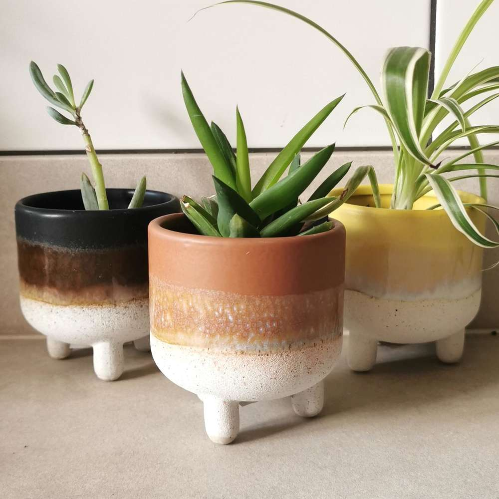 Brown Mojave Glaze Plant Pot at Albert & Moo