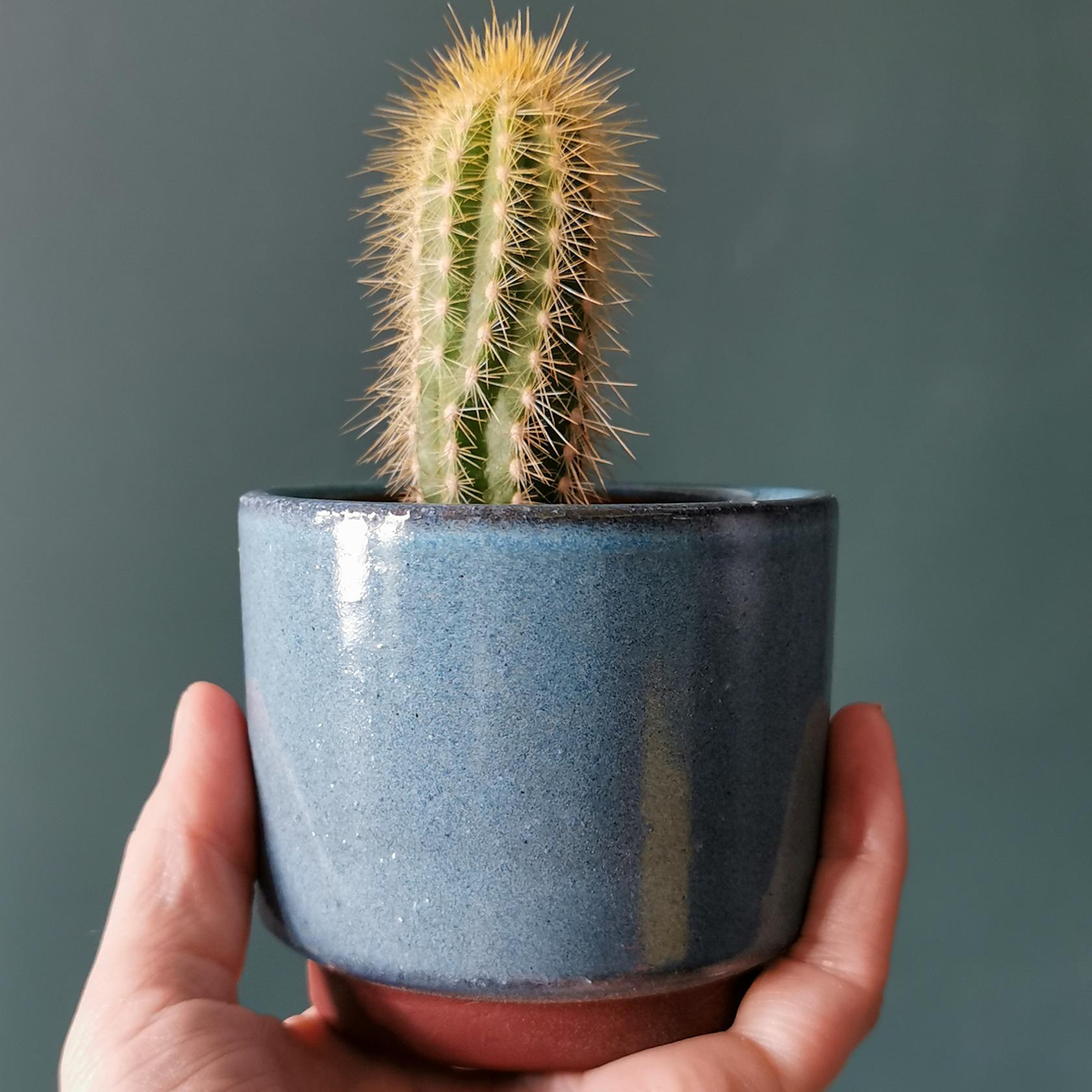 Mini Blue Malibu Glazed Plant Pot at Albert & Moo