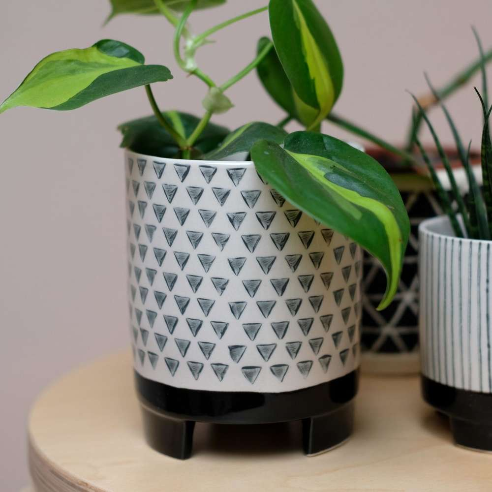 Large Geometric Monochrome Plant Pot at Albert & Moo
