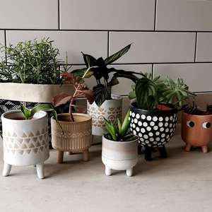 Little Leggy Terracotta Plant Pot at Albert & Moo