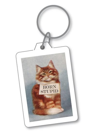KEYRING STUPID CAT