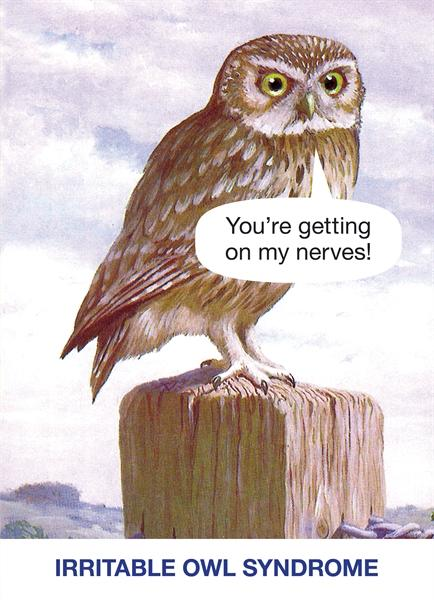 You're getting on my nerves! Irritable Owl Syndrome