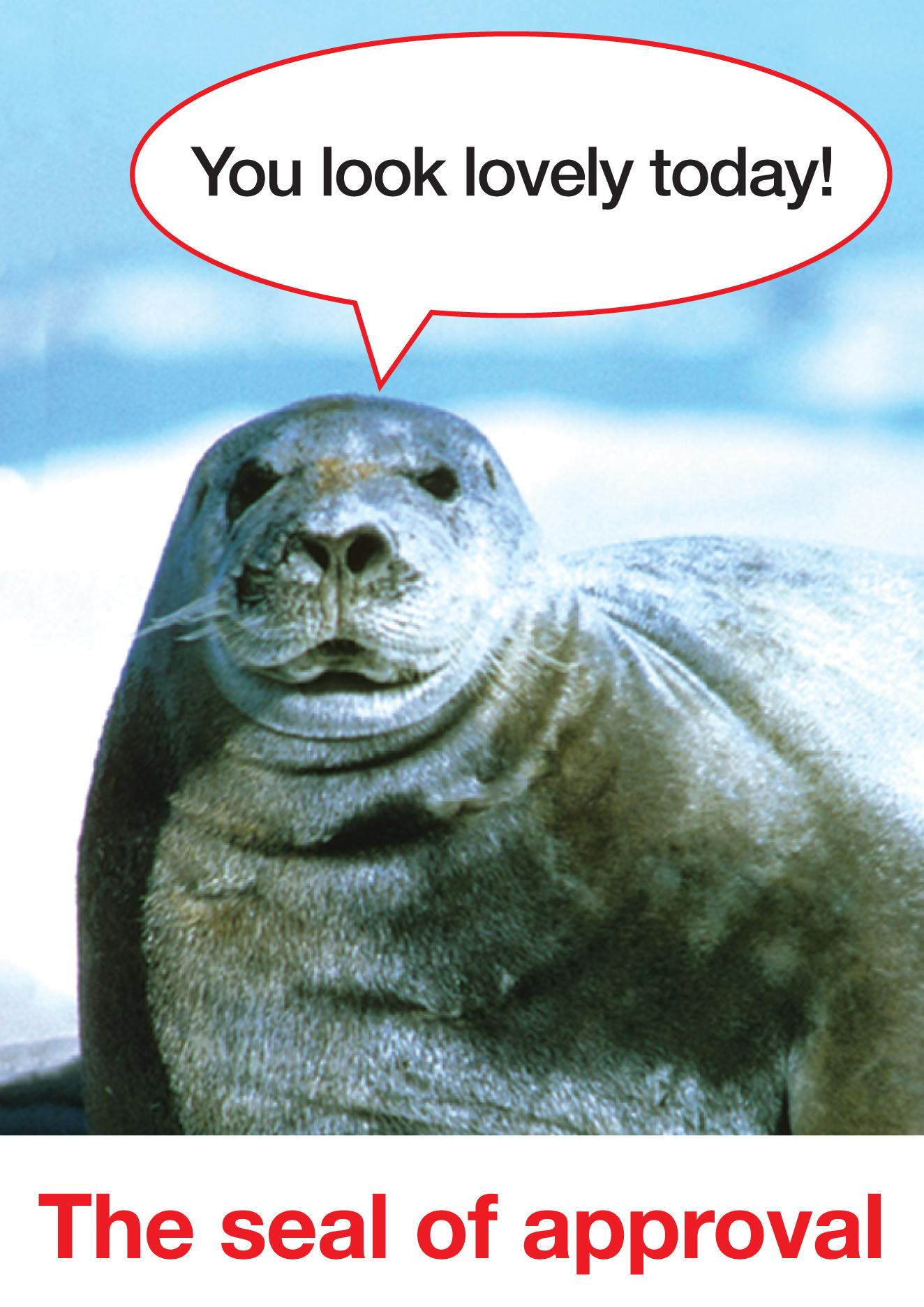 'You look lovely today' The Seal of approval