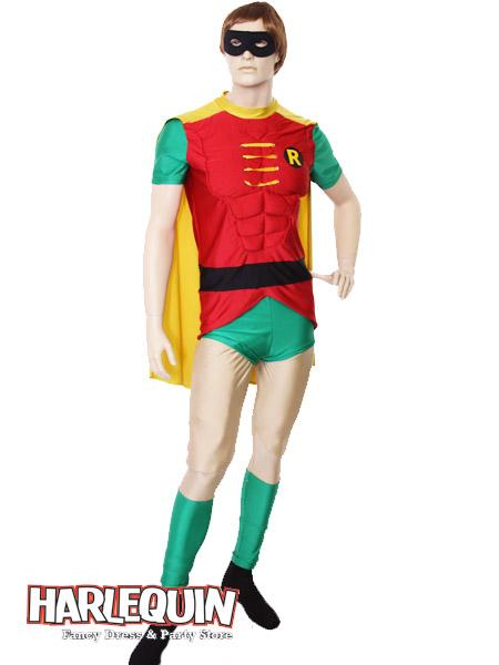 Robin Style Hire Costume
