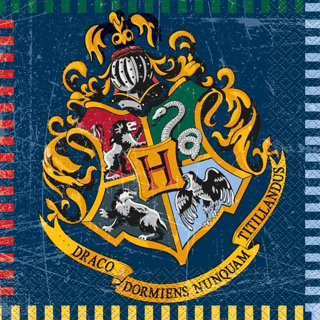 Paper Napkins Harry Potter
