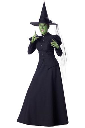 Wicked Witch Hire Costume