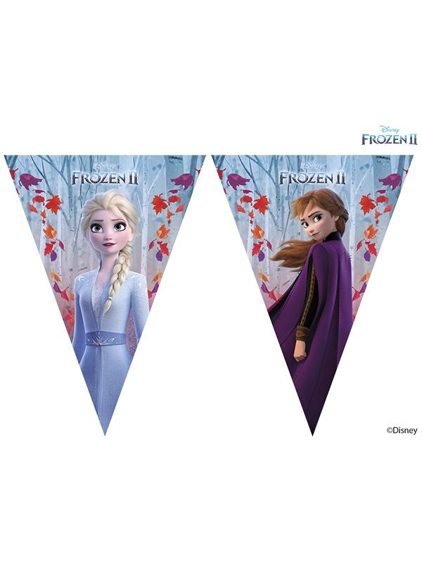 Frozen 2 Pennant Flag Bunting