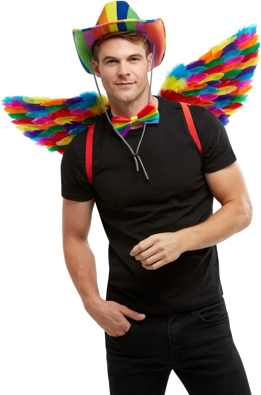 Rainbow Feather Wings 80cm