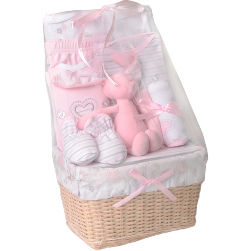 Newborn Baby Gift Basket (girl)