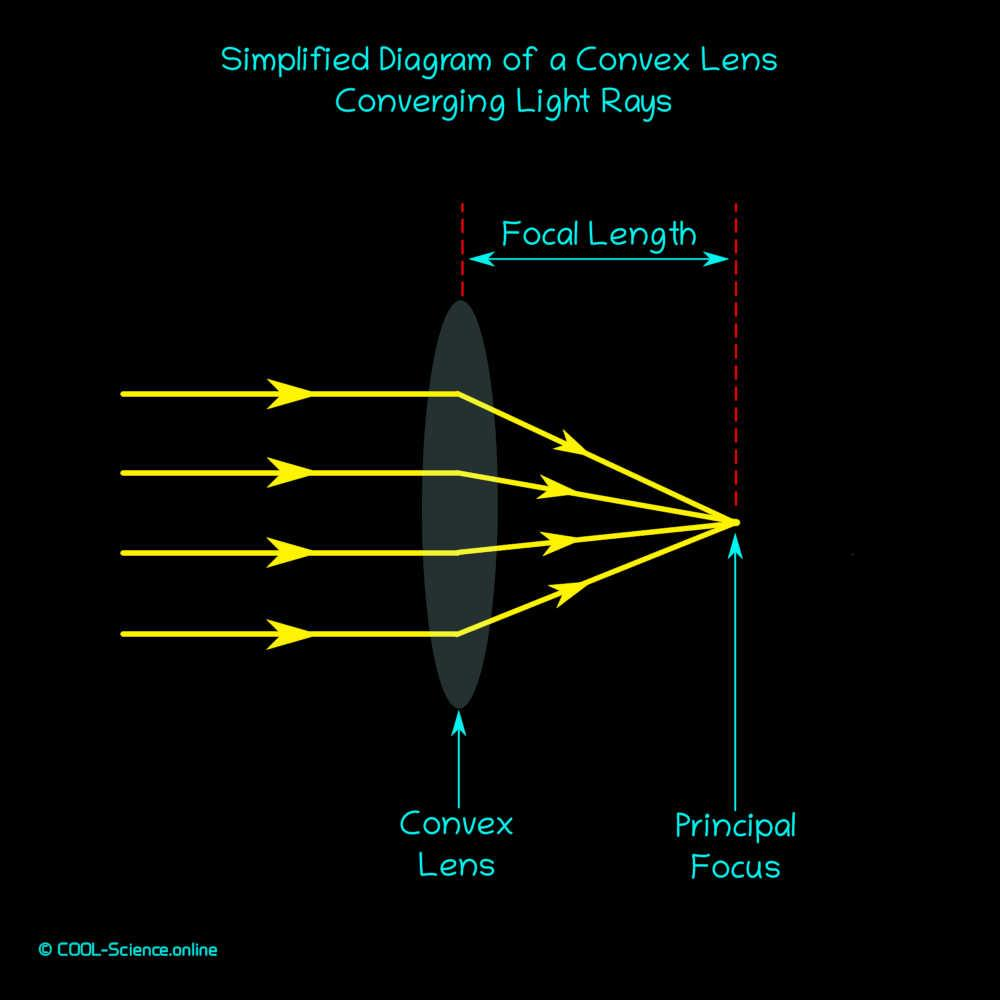 Simplified diagram of a convex lens converging light rays