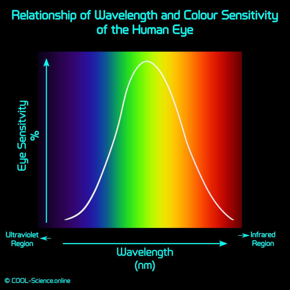 Relationship of Wavelength and Colour Sensitivity of the Human Eye