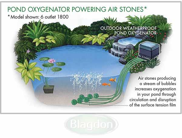 Blagdon Pond Oxygenator 2400 Air Pump Diagram