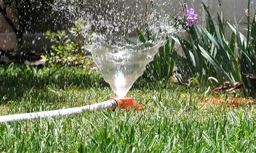 Busting The Biggest Garden Irrigation Myths