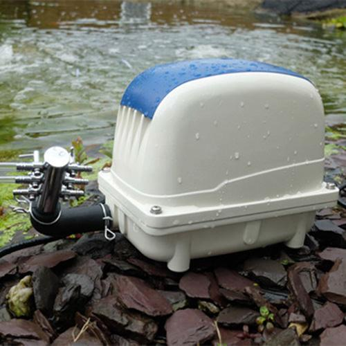 Pondxpert ElectroAir Pond Air Pump 6000