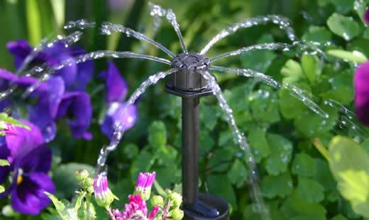 Common Mistakes Made With Drip Irrigation