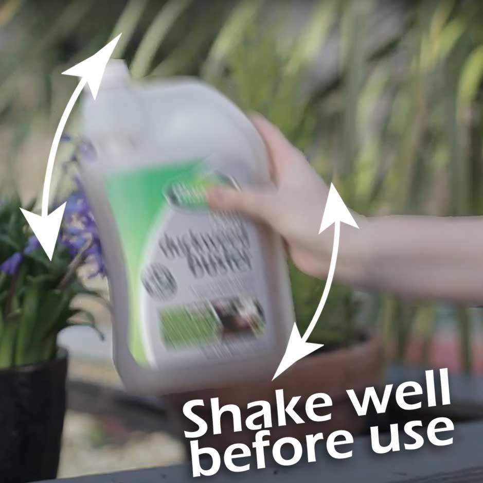 shake the bottle well