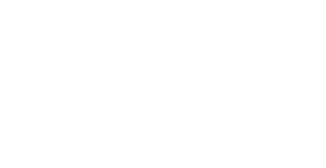 Vieri Hair Solutions