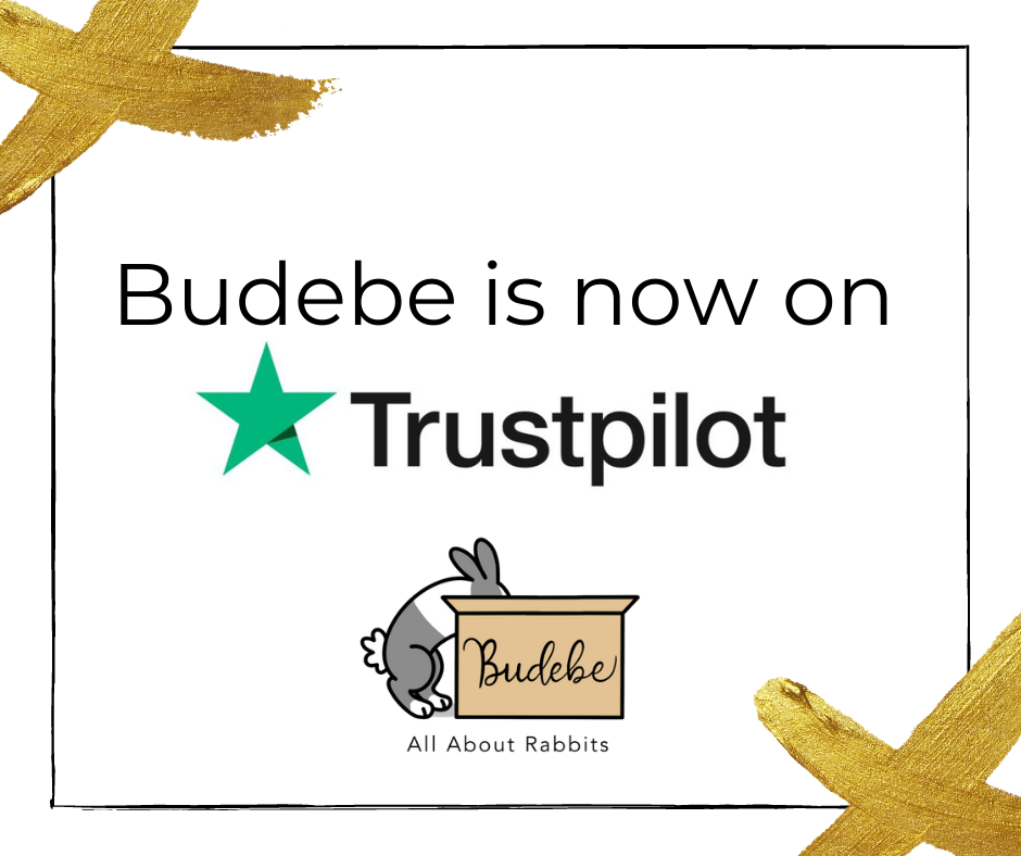 Budebe Is Now On Trustpilot