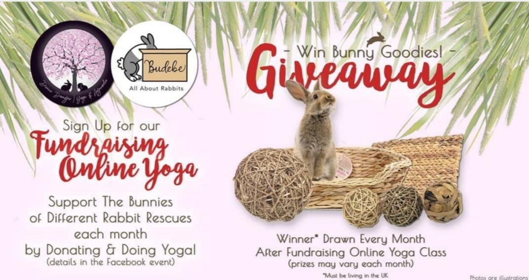 Diana Yoga & Ayurveda and Budebe Collaboration