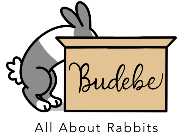 Budebe