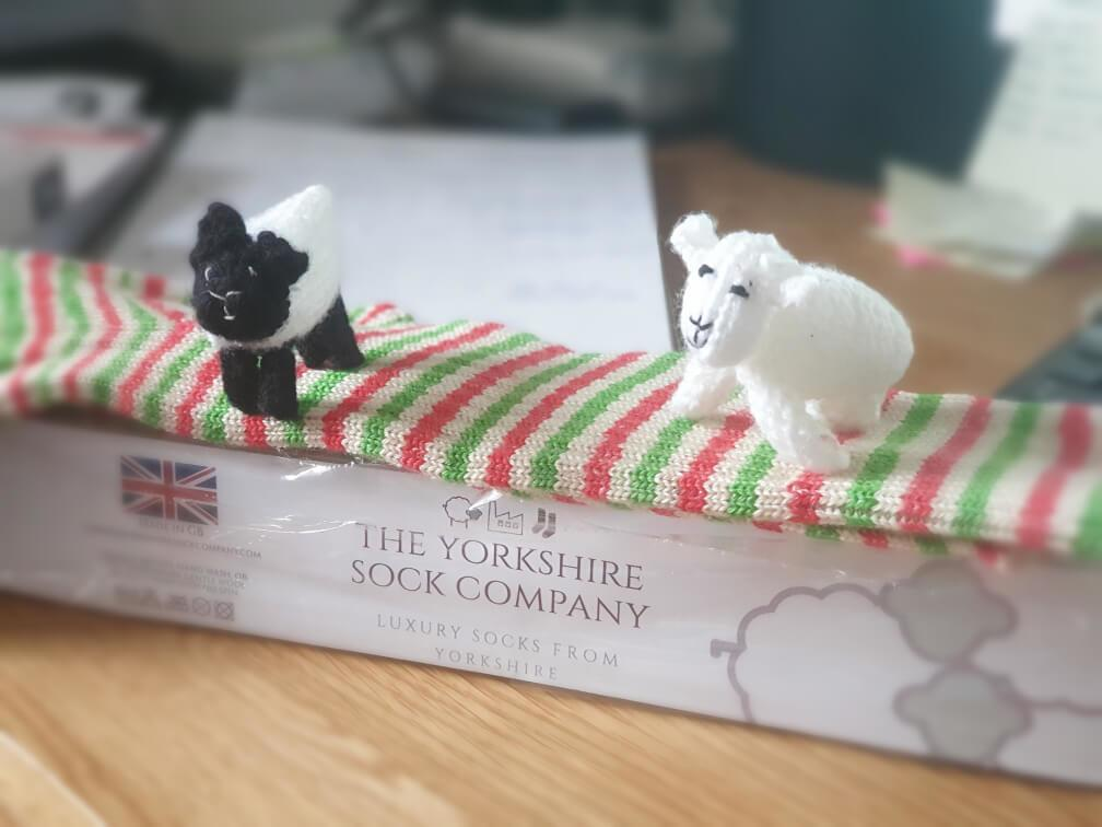 knitted-sheep-on-sock-box