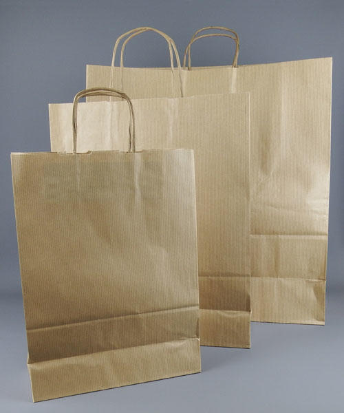 Brown paper bags with twist handle