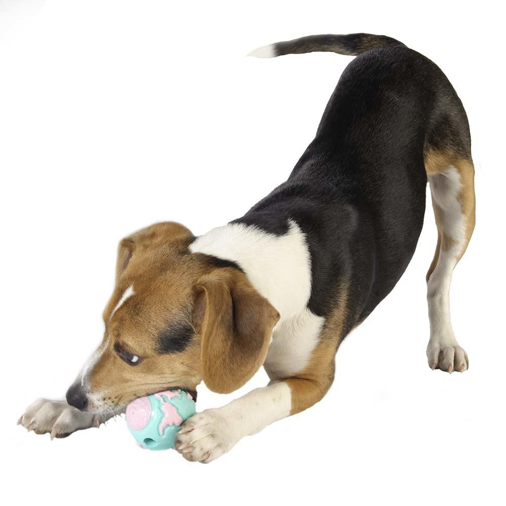 Planet Dog Orbee-Tuff Pup Ball Tough puppy chew toy