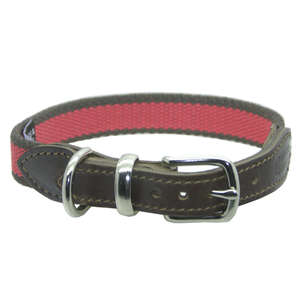 D&H Striped Cotton Webbing Dog Collar Pink