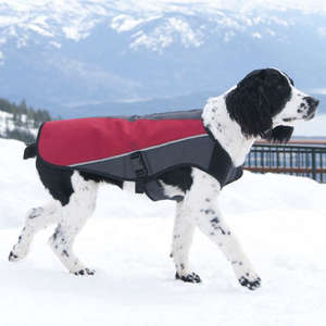 EzyDog Element Jacket All Weather Dog Coat
