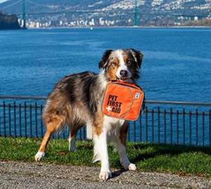 Canine Friendly Pet First Aid Kit For Home and Travel