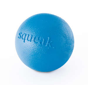 Planet Dog Orbee-Tuff Squeak Ball Blue