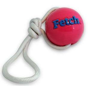 Planet Dog Orbee-Tuff Fetch Ball With Rope Pink